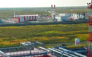 Пякяхинское месторождение – крупнейший нефтегазовый объект Ямало-Ненецкой автономии