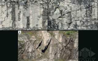 Прогнозирование позиции слабоустойчивых участков бортов карьера в массивах скальных пород на ранней стадии постановки их на предельный контур