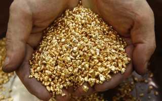 В погоне за солнечным металлом: добыча золота в России физическими лицами