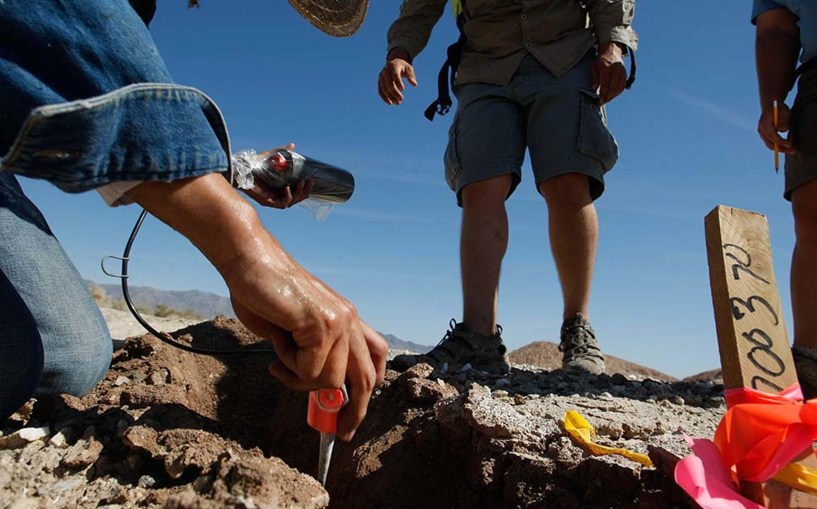 Прикладная геология - наука и профессия